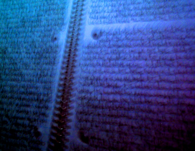 word-blur